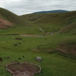 View over herds of yaks and horses-3