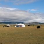 Khövsgöl summer pasture