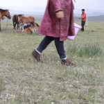 Milking mares (Khövsgöl)-7